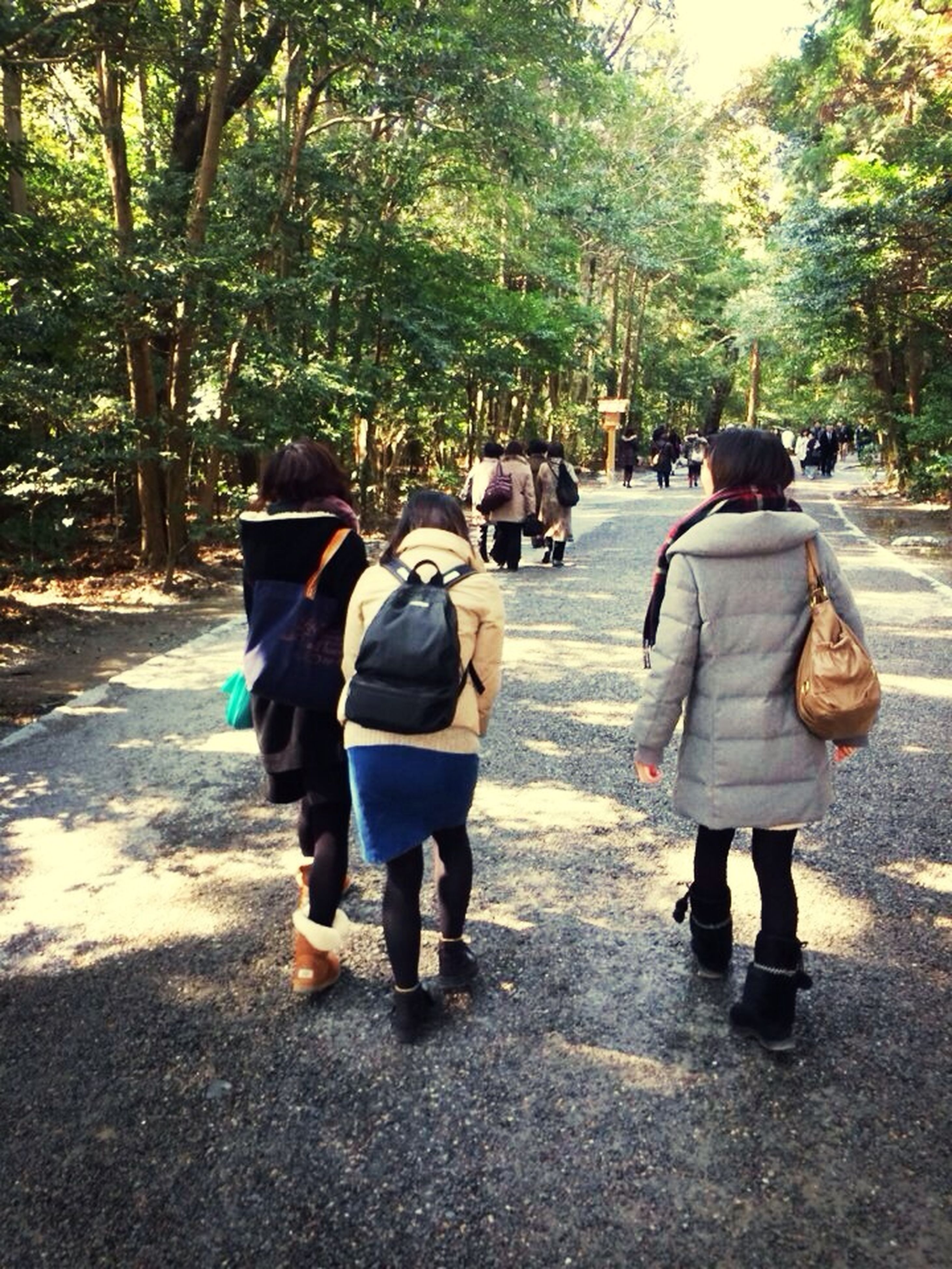 togetherness, full length, rear view, lifestyles, walking, tree, leisure activity, men, casual clothing, person, bonding, street, girls, love, childhood, day, footpath, holding hands
