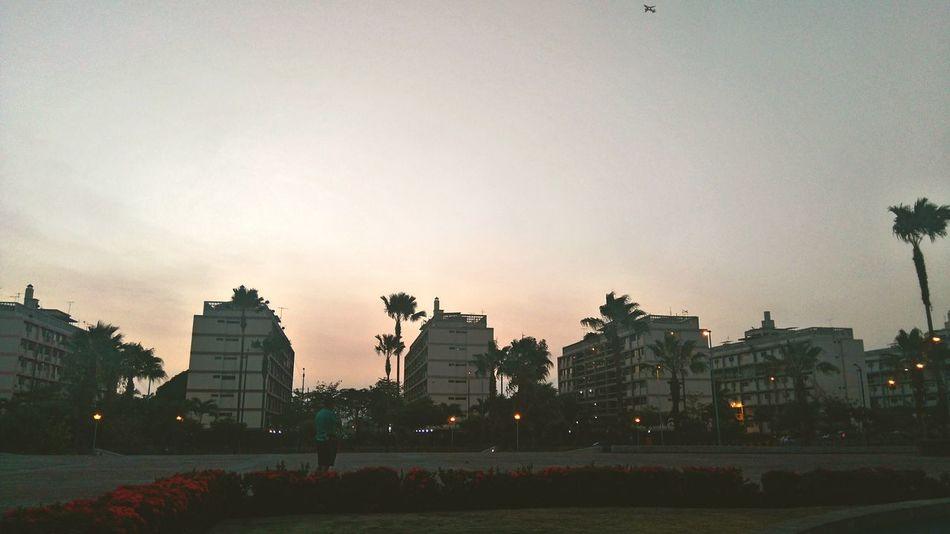 Parque Forestal Guayaquil Avion atardecer