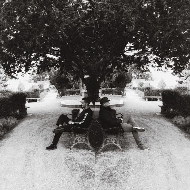 Reflectionirror] Mirrored