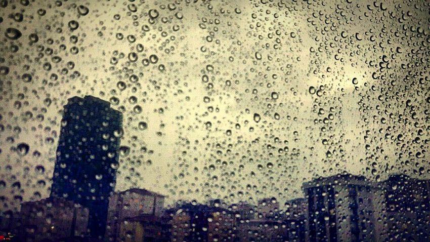 Enjoy The New Normal Rainy Morning Rain No People Likes likeforlike likemyphoto qlikemyphotos like4like likemypic likeback ilikeback 10likes 50likes 100likes 20likes likere 🍁🍂autumn