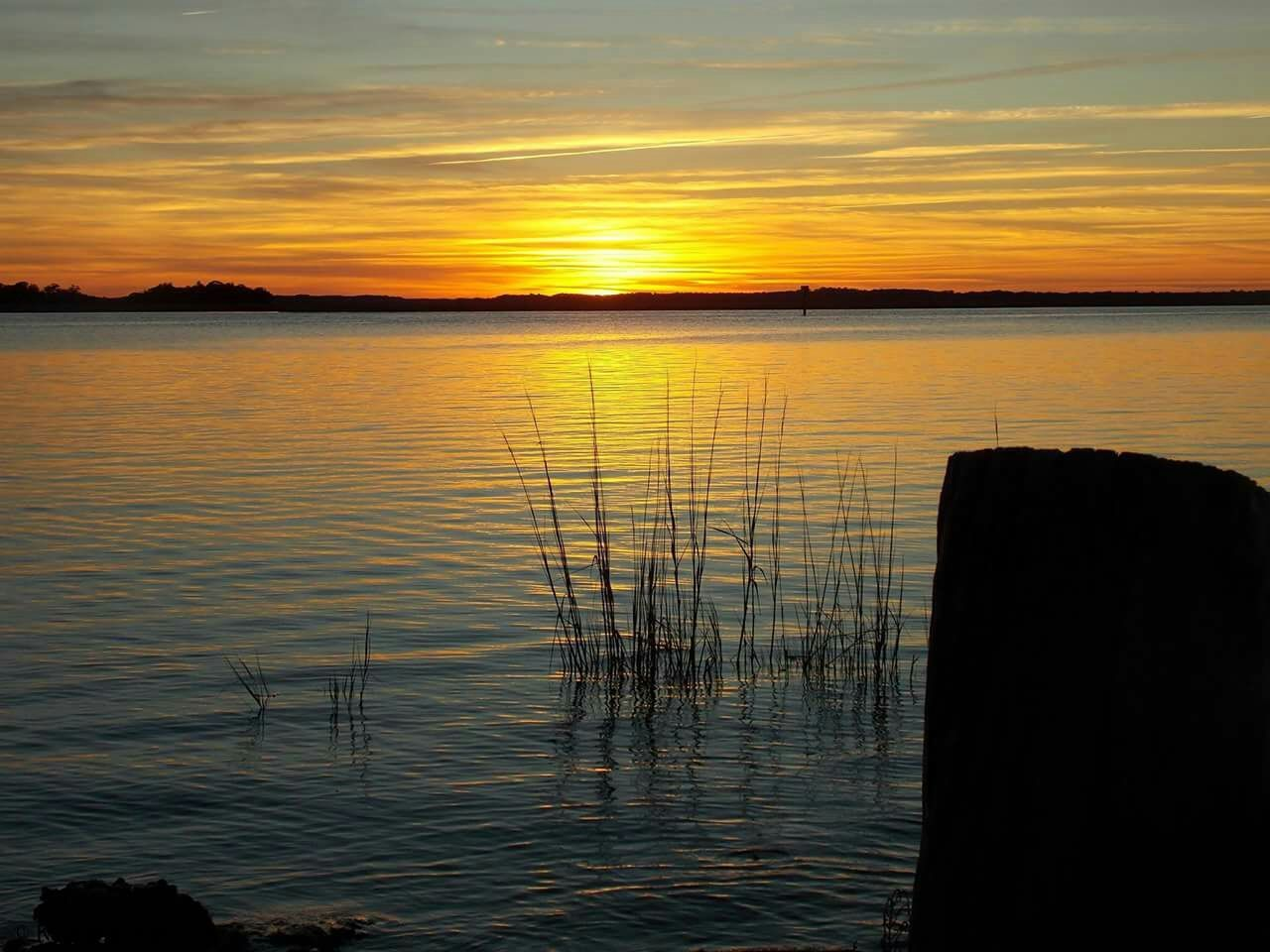 Showcase: November a another different sunset. I love nature. Sunsetporn Like No Other  EyeEm Sunset EyeEm Nature Lover This Week On Eyeem Blessedandthankful United States South Carolina Enjoying The Sun Relaxing EyeEmBestPics I Love Taking Pictures <3 Live Near You Eyeem Popular Photos Eyeemphotography Wadmalaw Island SC Beautiful Surroundings Eye4photography  Capture The Moment