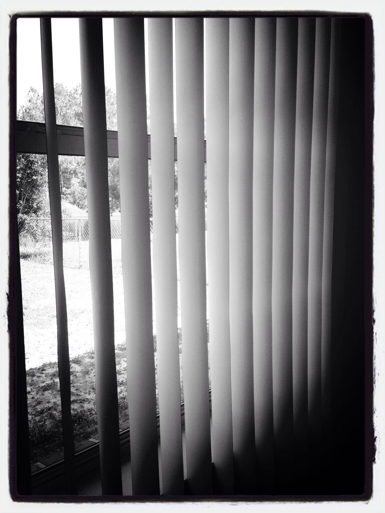 Looking outside