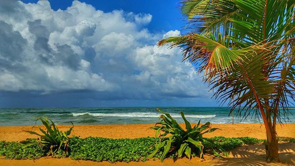 Srilankan beaches SriLanka Bentota Nature Induruwa Templetreeresort Spa LG  G4 Camera Phonography  Photooftheday Picoftheday Wanderlust Instatravel Travel Colorful Clouds Blue Sky Blue Sommergefühle