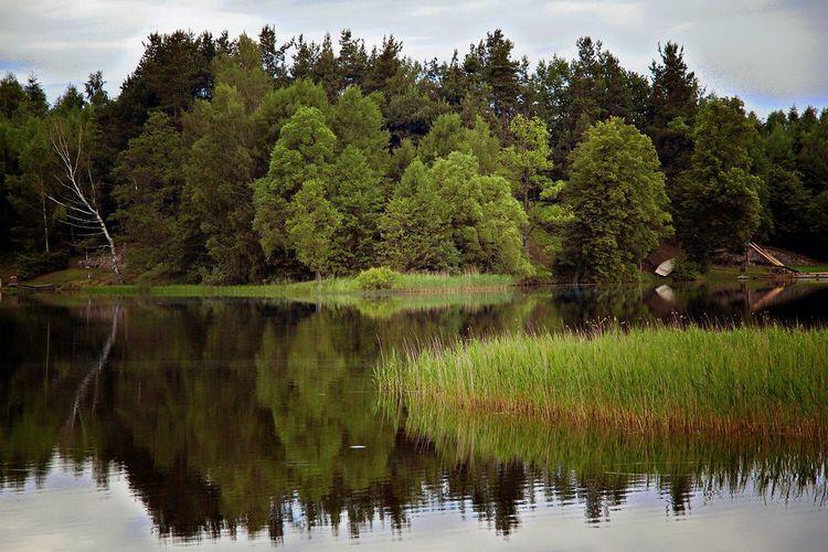 Nature Water Lake Poland Mazury