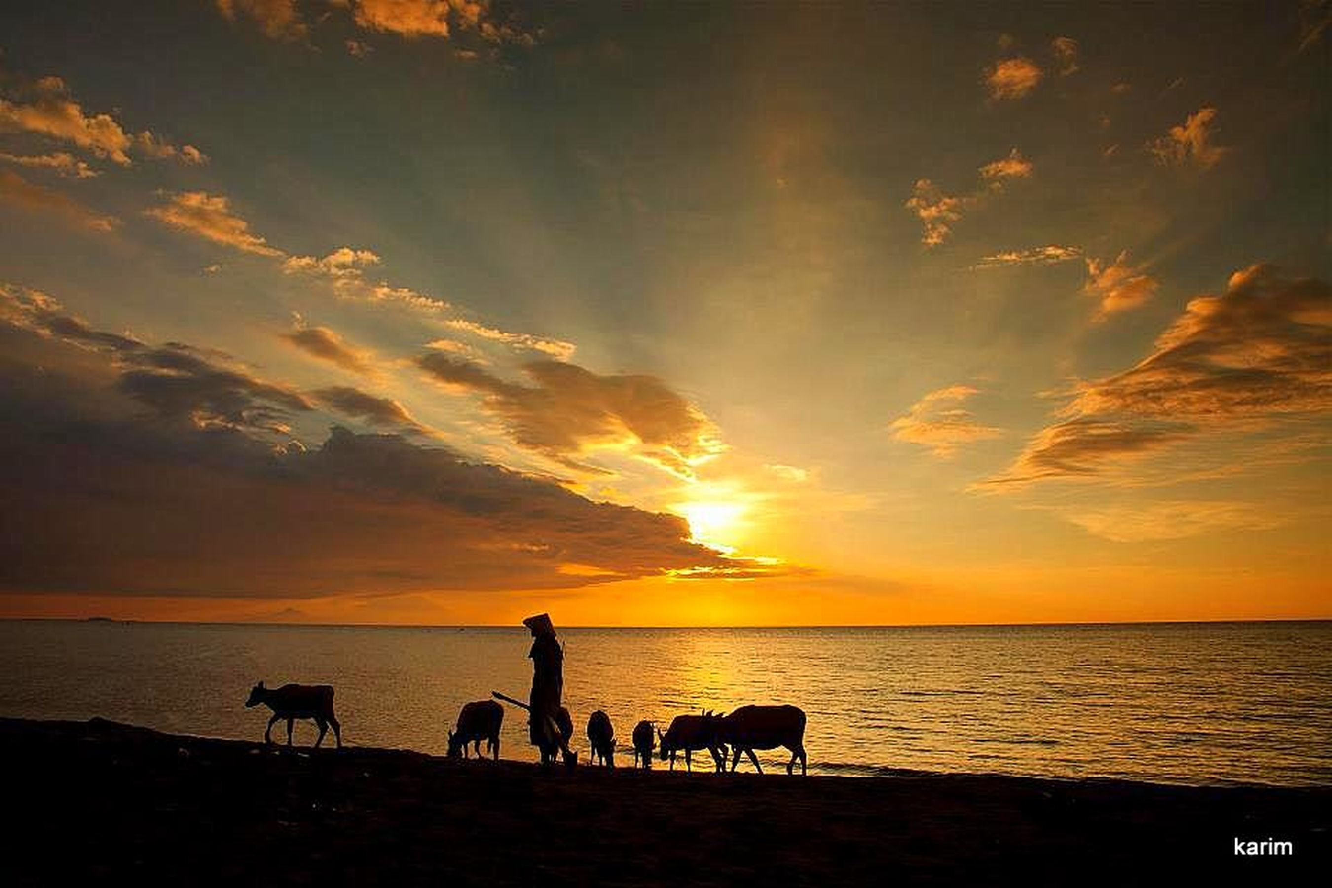 Sunset Silhouette EyeEm Best Shots EyeEM Beach Photography