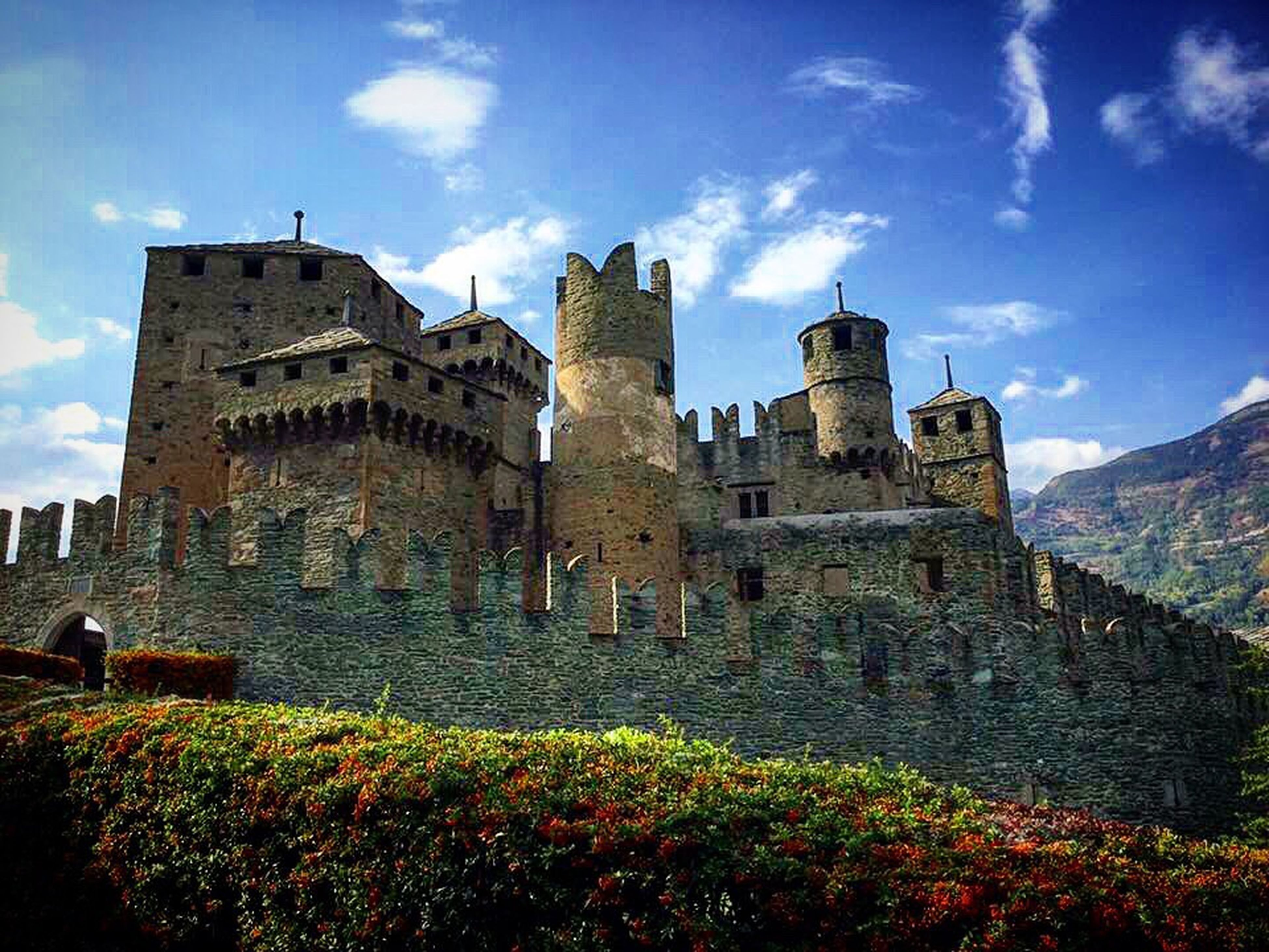 architecture, built structure, flower, building exterior, plant, castle, tower, history, sky, the past, travel destinations, growth, medieval, cloud - sky, surrounding wall, fragility, lookout tower, old ruin, fortified wall, tourism, in bloom, famous place, fort, culture, springtime, fortress, outdoors, freshness, blossom, day, blue, garden, tall - high, nature, flowerbed