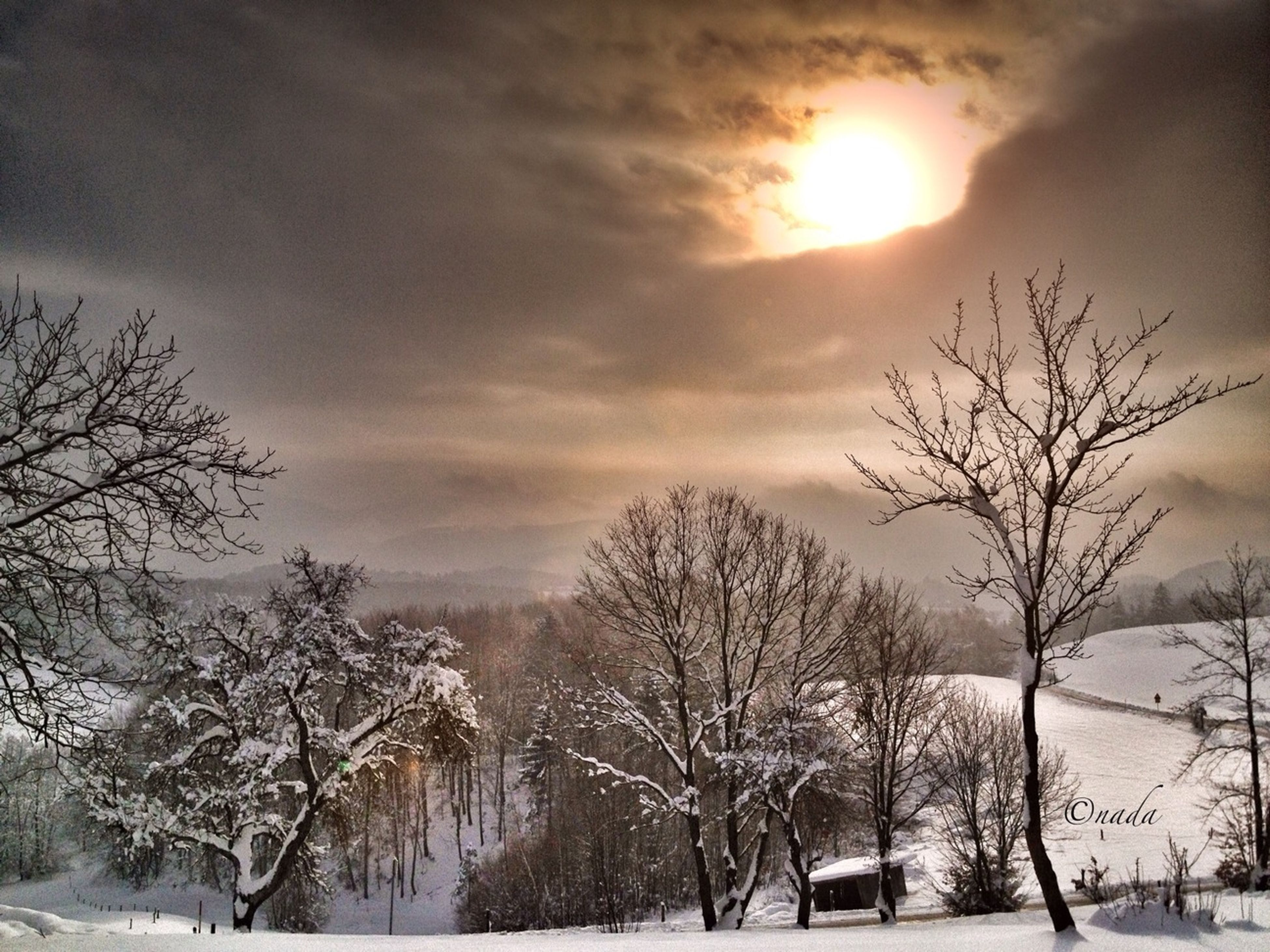 snow, winter, cold temperature, bare tree, tree, weather, sky, season, tranquility, branch, cloud - sky, sun, tranquil scene, nature, beauty in nature, scenics, covering, sunset, silhouette, cloudy