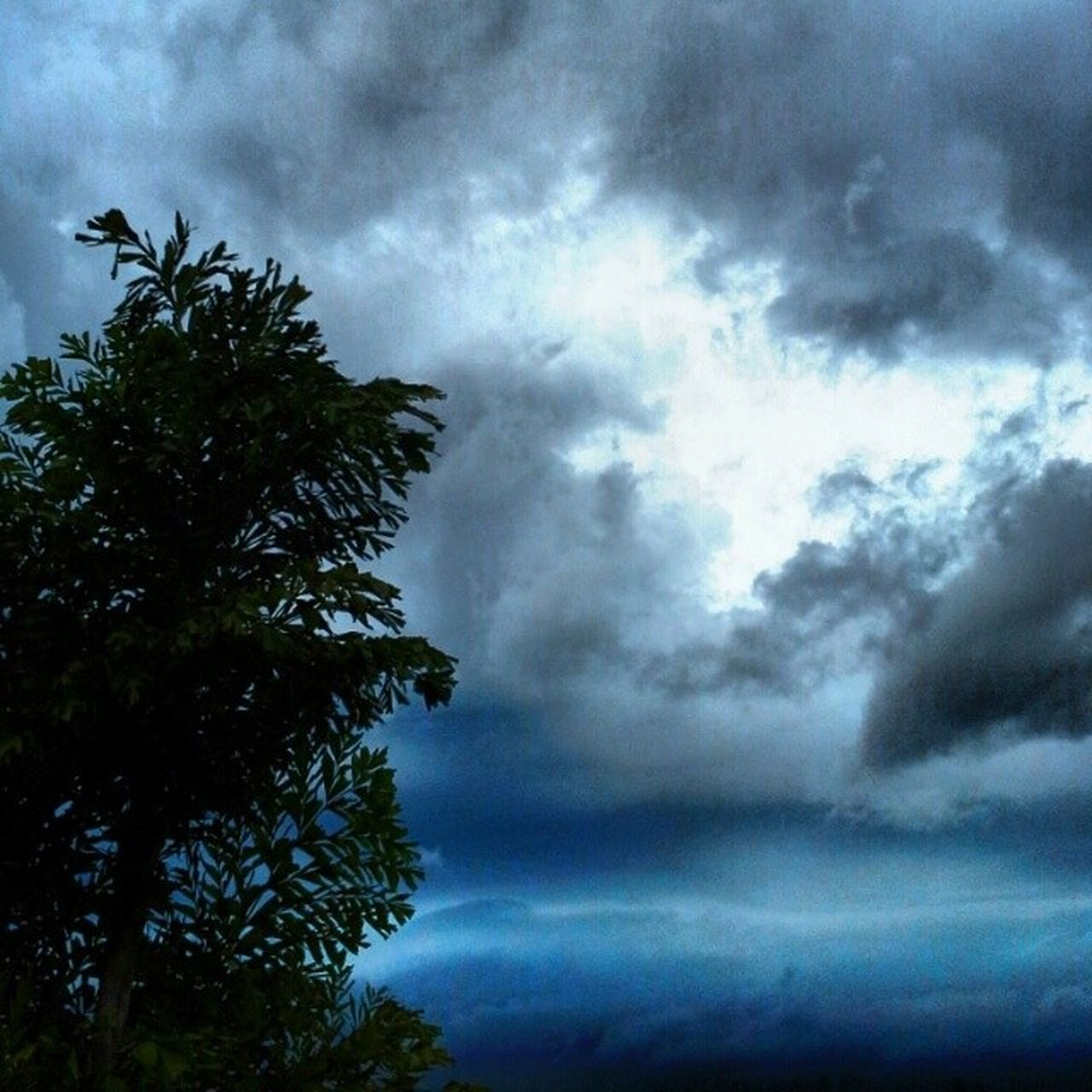 sky, cloud - sky, nature, beauty in nature, tree, scenics, storm cloud, low angle view, day, no people, outdoors