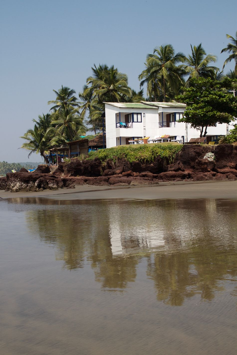 Architecture Ashvem Ashvem Beach Beach Beach Life Day Goa India Landscape Nature No People North Goa Outdoors Palm Tree Sea Tropical Tropical Climate Vacations Water Water Reflections