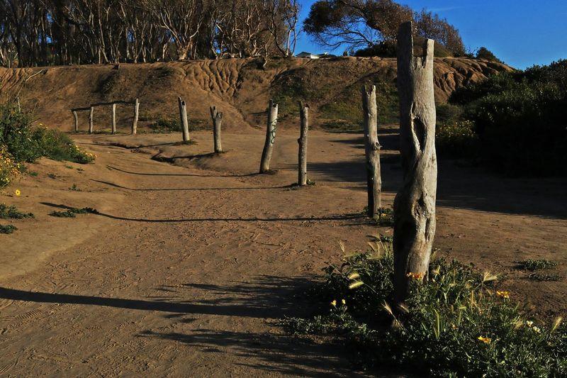 Path Pathway California Beach Fence Sandy Fence Beach Posts