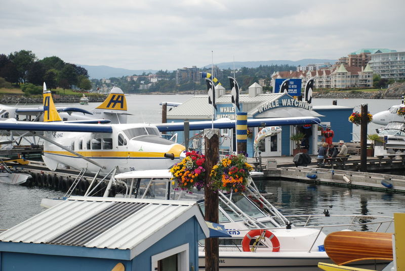 Sea Plane Architecture Beauty In Nature Boat Building Exterior Built Structure Day Mode Of Transport Moored Nature Nautical Vessel Outdoors Sea Sky Transportation Victoria Bc Water Whale Watching