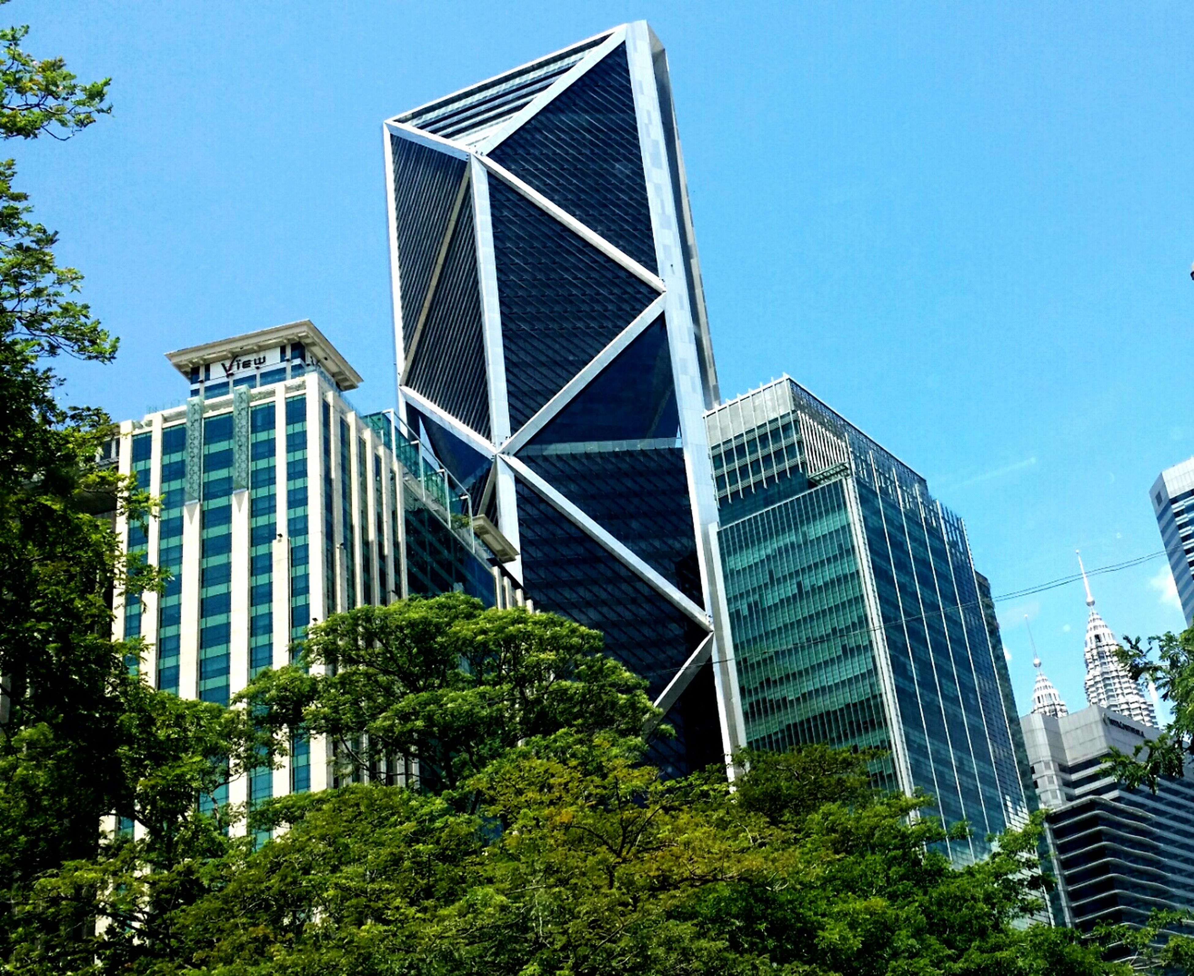 architecture, tree, built structure, low angle view, building exterior, skyscraper, modern, city, office building, tall - high, clear sky, blue, tower, travel destinations, capital cities, growth, place of work, development, day, tall, sky, city life, outdoors, building story, architectural feature, financial district, urban skyline, treetop, green color