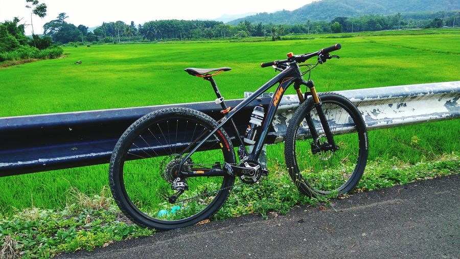 Bike Myroon, Relaxing Cycling CatEye Kedah KualaNerang Cameraphone Village Outdoor