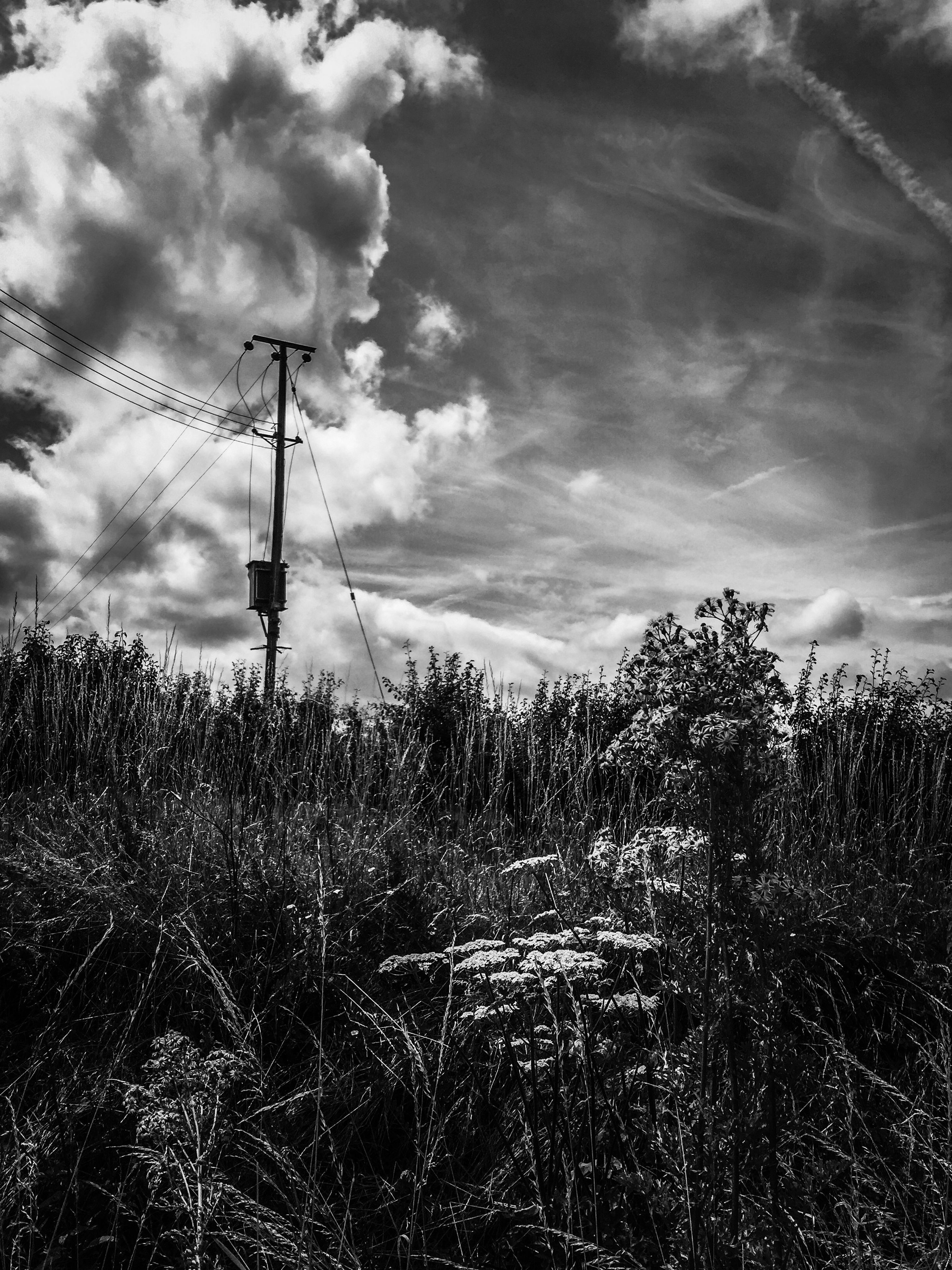 sky, fuel and power generation, electricity pylon, cloud - sky, electricity, cloudy, power line, technology, field, landscape, power supply, nature, tranquility, tranquil scene, weather, tree, windmill, rural scene, cloud, growth