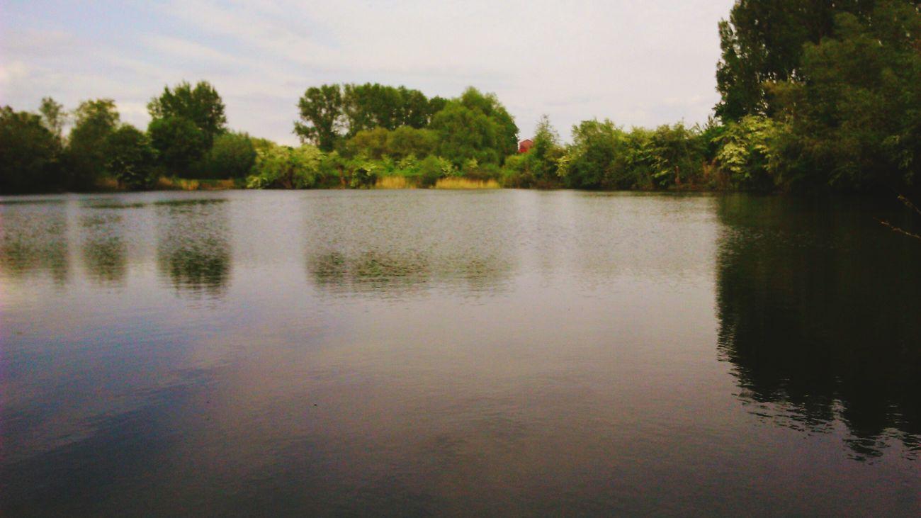 Barleben Germany Magdeburg Lake Light Water Sea