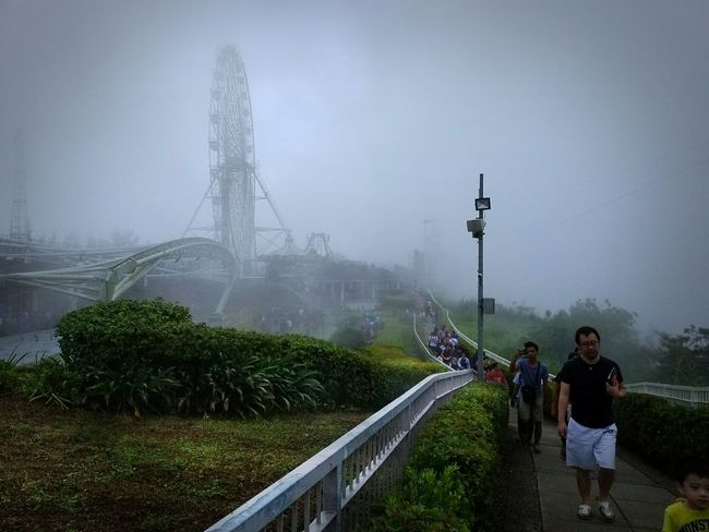 Foggy day in Tagaytay's skyranch amusement park Wet Fog Photography Themes Vacations EyeEmBestPics Travel EyeEm Best Shots Travel Photography Travelphotography Tranquility Tourism Philippines Photos Travel Destinations Southeastasia Philippinesphotography Cloud - Sky Tree Amusementpark Amusement Parks