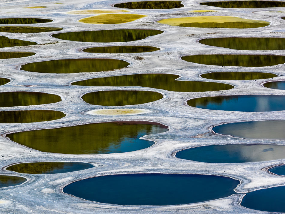 Backgrounds Close-up Day Full Frame Nature No People Osoyoos Osoyoos, BC Outdoors Spotted Lake Water