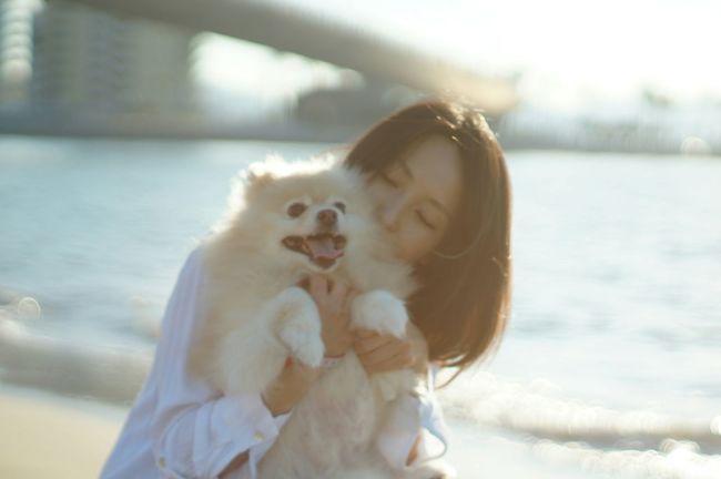 EyeEm Dogs Oldlens Nofilter EyeEm Dog Lover Mylovelydog Pomeranian