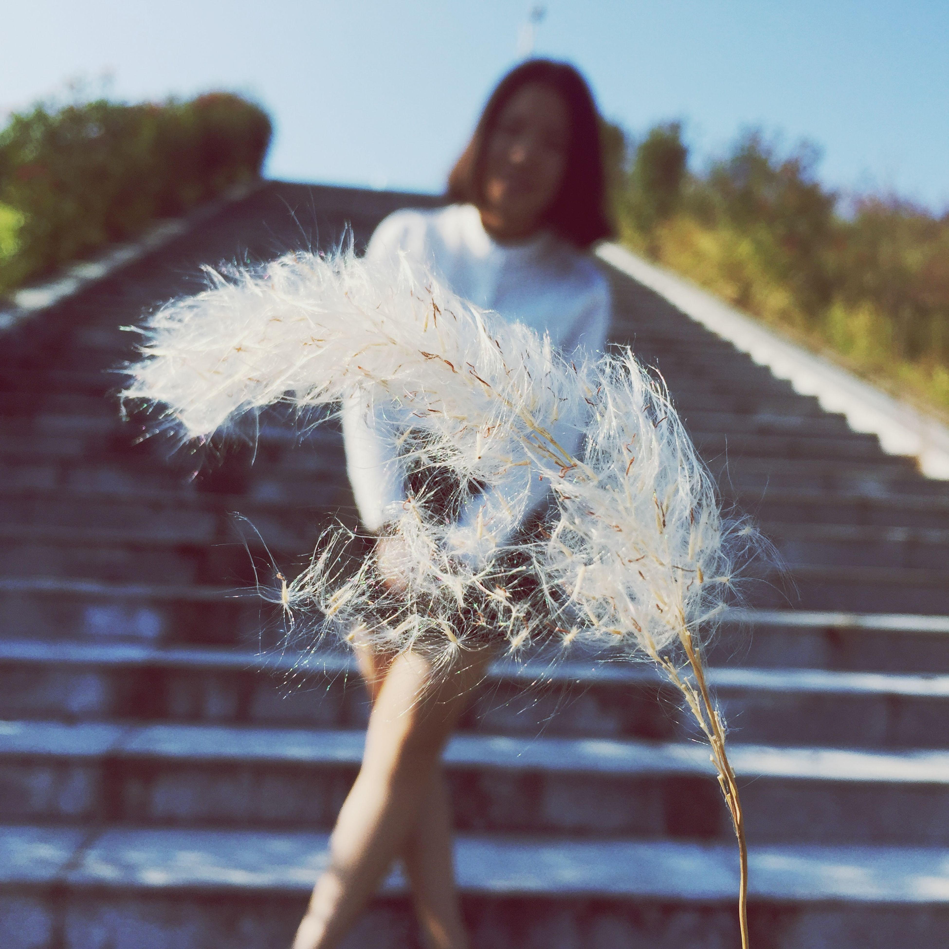 focus on foreground, dandelion, close-up, holding, day, outdoors, flower, nature, selective focus, fragility, lifestyles, leisure activity, sky, side view, rear view, full length, person, stem