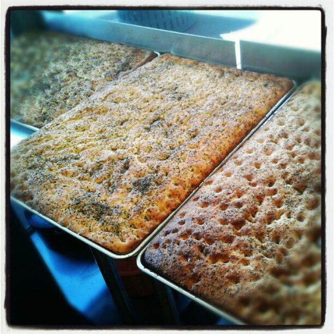 Fresh baked organic focaccia bread! White Wholewheat Bushfiregrill