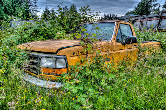 Abandoned Bad Condition Car Damaged Day Deterioration Discarded Field Growth Land Vehicle Mode Of Transport Obsolete Old Outdoors Plant Run-down Rusty Semi-truck Sky The Past Transportation Tree Van Vehicle Weathered