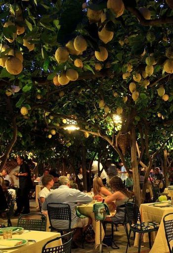 Tree Adults Only People Sitting Adult Men Chair Women Outdoors Real People Night Only Men Young Adult One Person