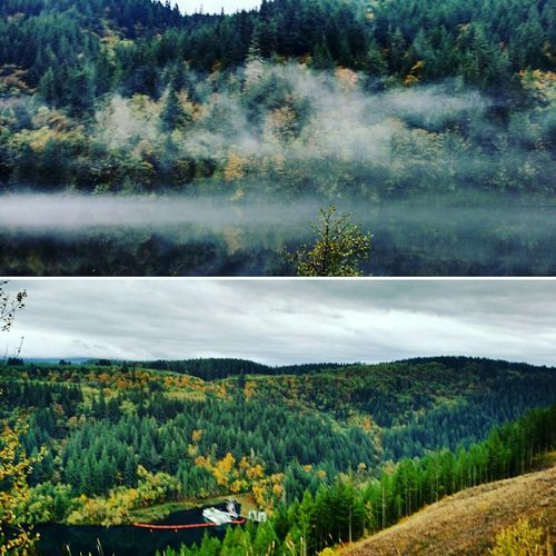 Driving through Oregon First Eyeem Photo