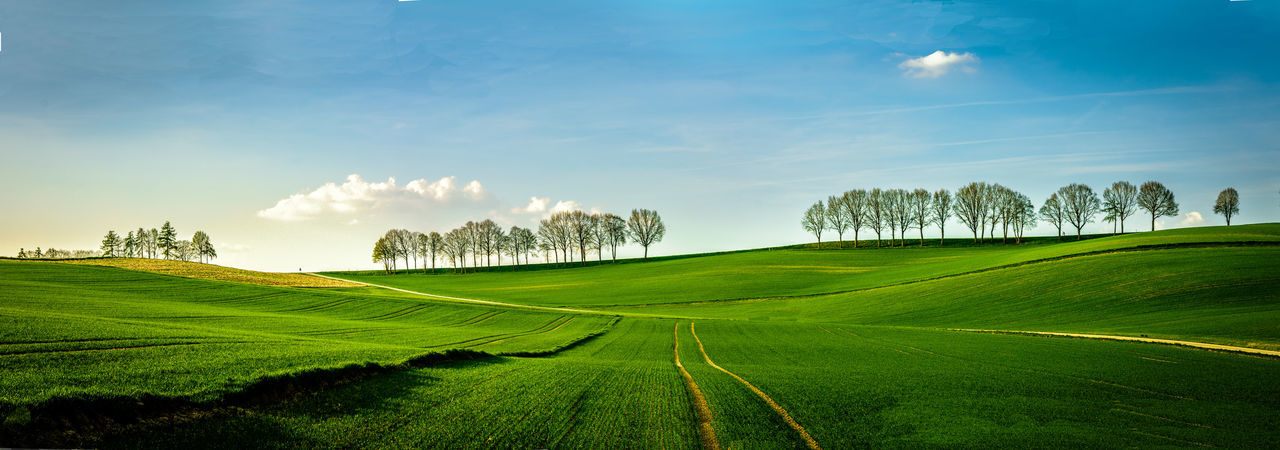 Wunderfull green hills in the spring in Bavaria Bavaria Beauty In Nature Field Fields Germany Green Hills Hills Landscape Sky And Landscape