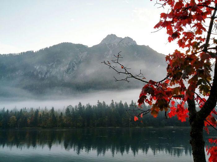 My Best Photo 2015 Tirol  Austria Pillerseetal Autumn