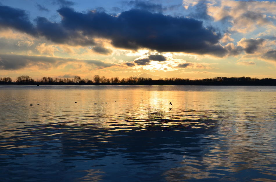 Danke, Willkomm-Höft Beauty In Nature Cloud - Sky D7000 Dusk Elbe EyeEmNewHere Nature Nikon No People Outdoors Reflection Scenics Schönheit Der Natur Sky Sonnenuntergang Sunset Tranquility Wasser Water Waterfront