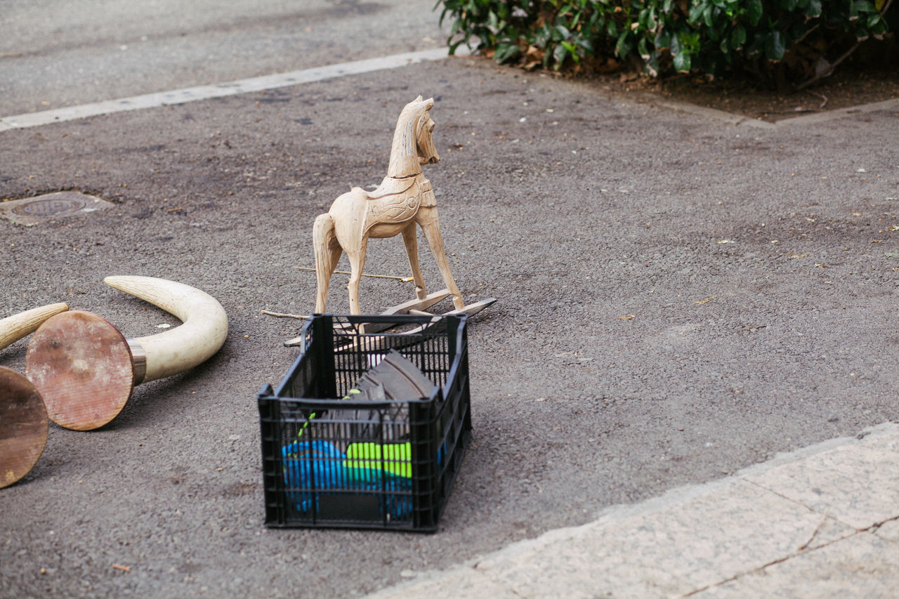 Animal Themes Box Day Dog Horse Mammal Monkey No People One Animal Outdoors Pets Street Street Photography Streetphotography