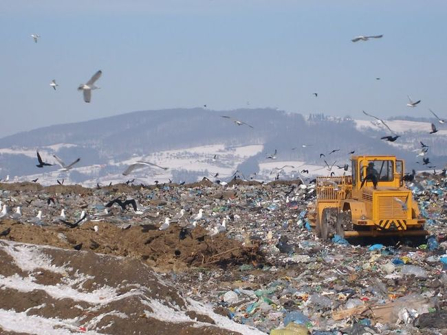 Adventure Birds Bulldozer Clear Sky Cold Cold Temperature Covering Day Dumb  Flying Frozen Garbage Garbage Dumb Human Settlement Landscape Nature Outdoors Perspective Season  Snow Top Perspective Weather White White Color Winter