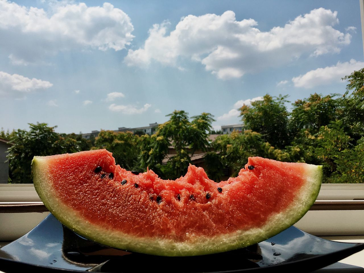 slice, fruit, watermelon, healthy eating, food and drink, freshness, no people, food, cross section, day, table, sky, close-up, tree, outdoors, nature, eaten, ready-to-eat