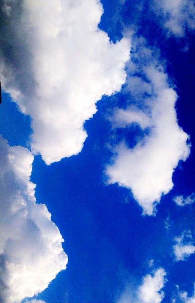 Bulut Mavi Blue Mavibeyaz White White Color