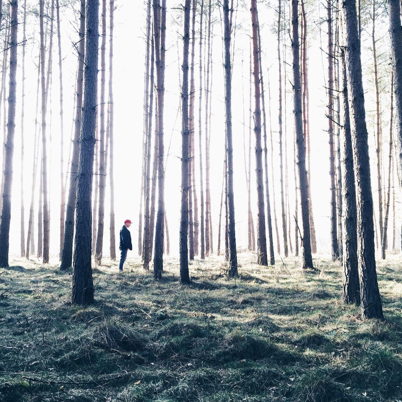 The Human Condition EyeEm Best Shots VSCO Secret Garden IPSTrees&Leaves Exploring New Ground IPSNatural The Moment - 2015 EyeEm Awards The Traveler - 2015 EyeEm Awards The Great Outdoors - 2015 EyeEm Awards IPS2015Fall