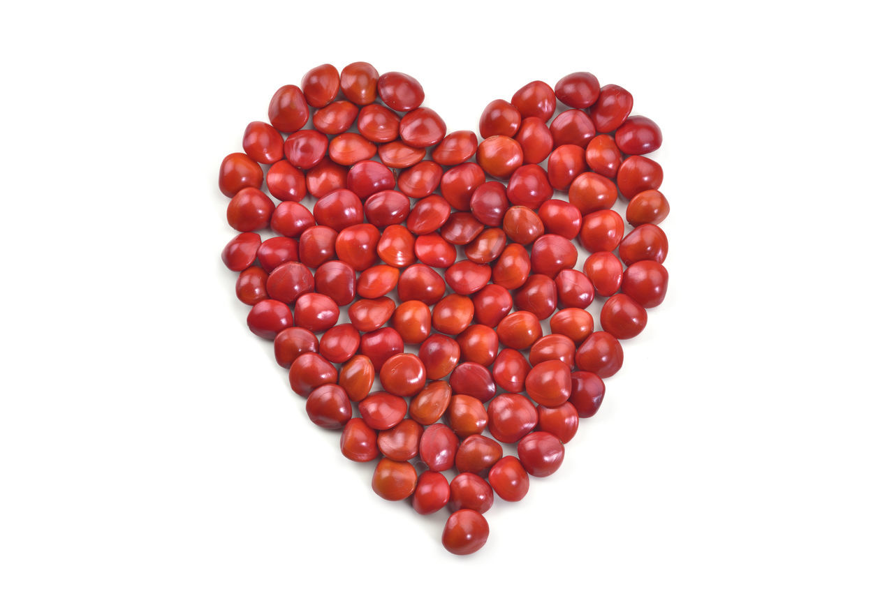 Acacia Acacia Tree Background Bean Beautiful Color Enthusiasm Feeling Happy Heart Heart Shape Love Love Lure Many Mature Miss No People Red Red Sowing Studio Shot Togetherness Warm White Background