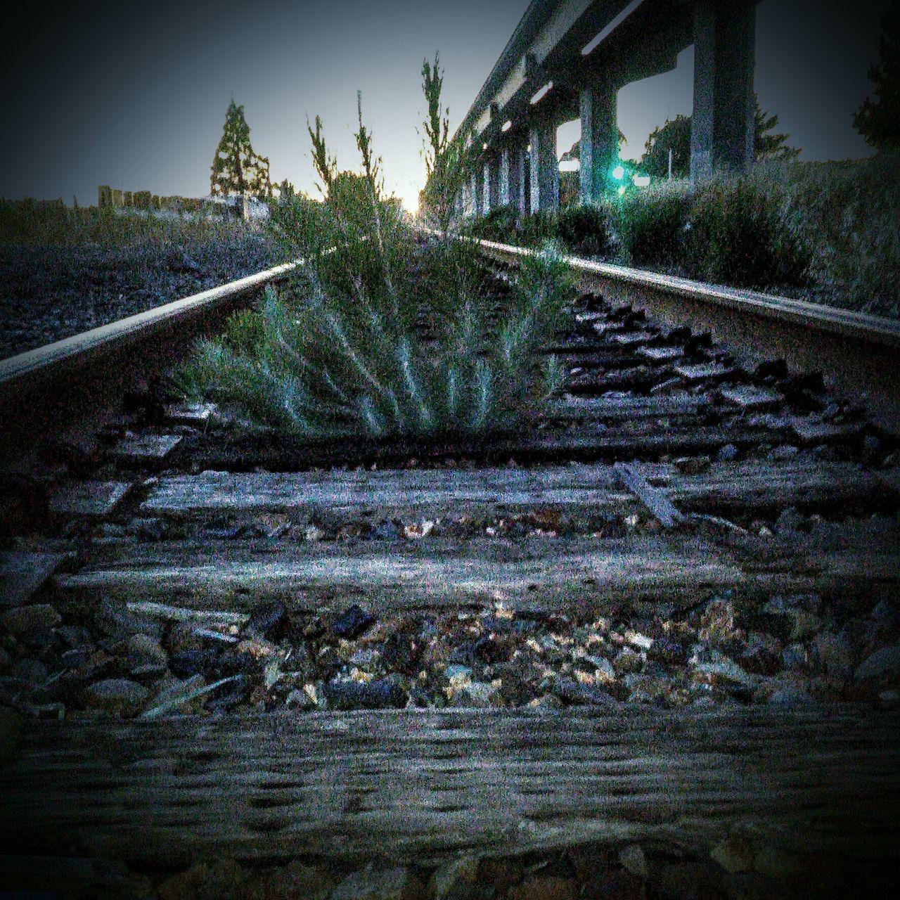 railroad track, rail transportation, transportation, railroad, no people, railway track, railway, outdoors, day, tree, nature, architecture