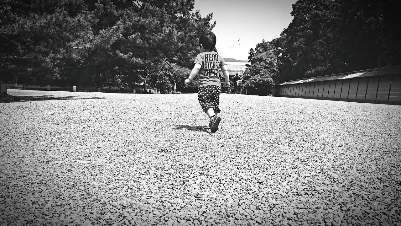 [16.05.17] 宙。 Monochrome Black & White Japan Enjoying Life Black And White Walking Outdoors Day Sky Creative Light And Shadow Cool Japan 京都御苑 Person Child People Pixlr Japanese  Tree Park