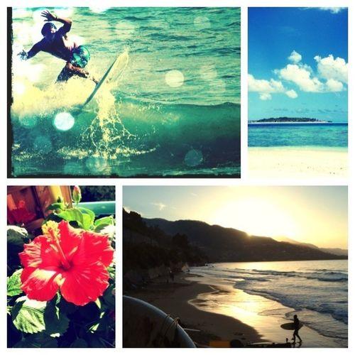 Liguria summer love