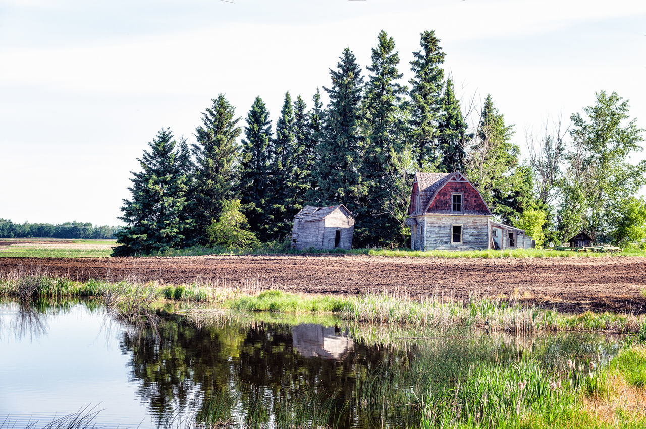 Abandoned Homestead Farm Life Reflection Architecture Beauty In Nature Building Exterior Built Structure Country House Day Grass Growth House Nature No People Outdoors Sky Tranquil Scene Tranquility Tree Water