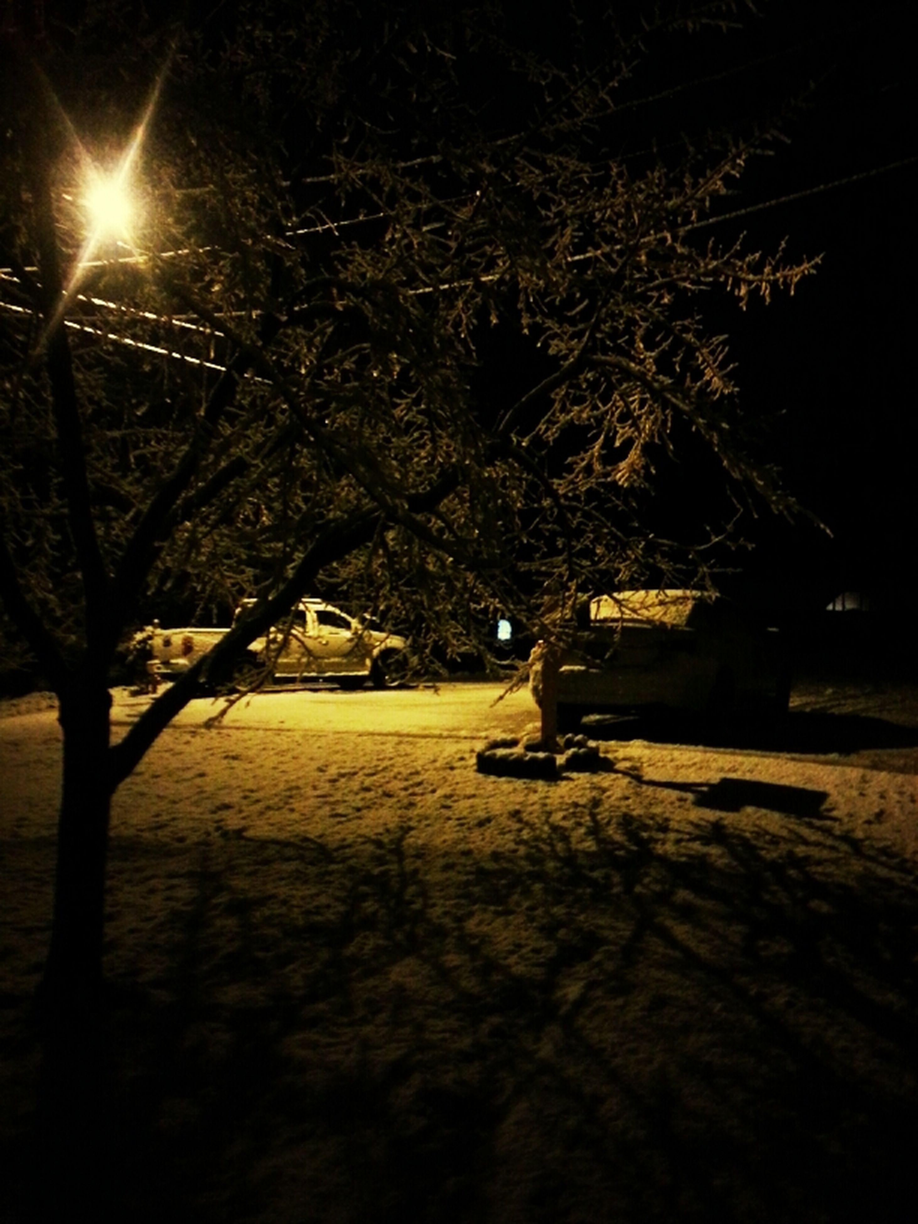 night, bare tree, tree, silhouette, sun, branch, snow, illuminated, winter, tranquility, sunlight, dark, street light, nature, lens flare, cold temperature, tranquil scene, sky, outdoors, sunbeam