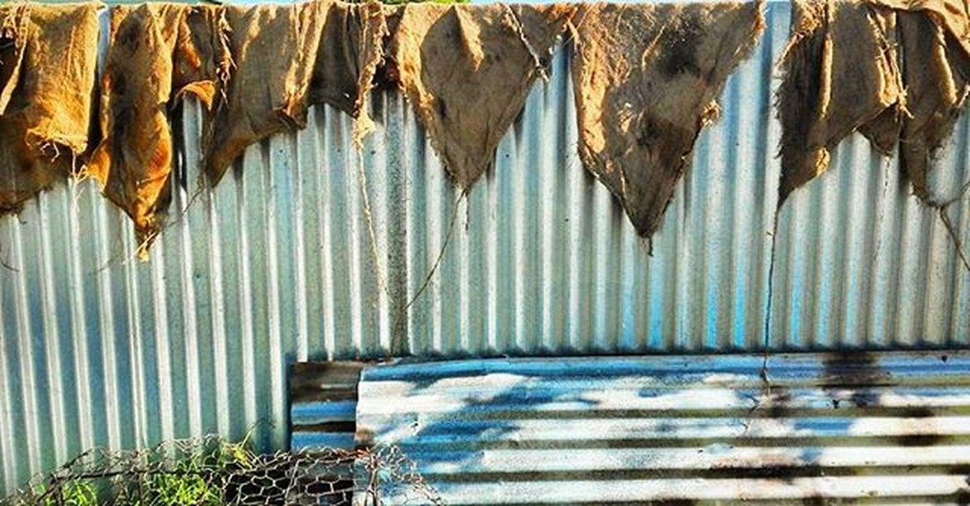 Fence Maori Hangi Hangisacks Corrugatediron NZ Newzealand Aotearoa