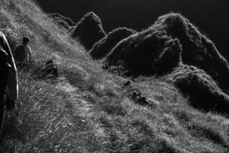 Rinjani National Park 3227m Adventure Black & White Black And White Blackandwhite Hiking Hikingadventures INDONESIA Outdoors Rinjani Rinjani National Park Rinjanimountain Tranquility Volcanic  Volcanic Landscape Volcano Volcanoes
