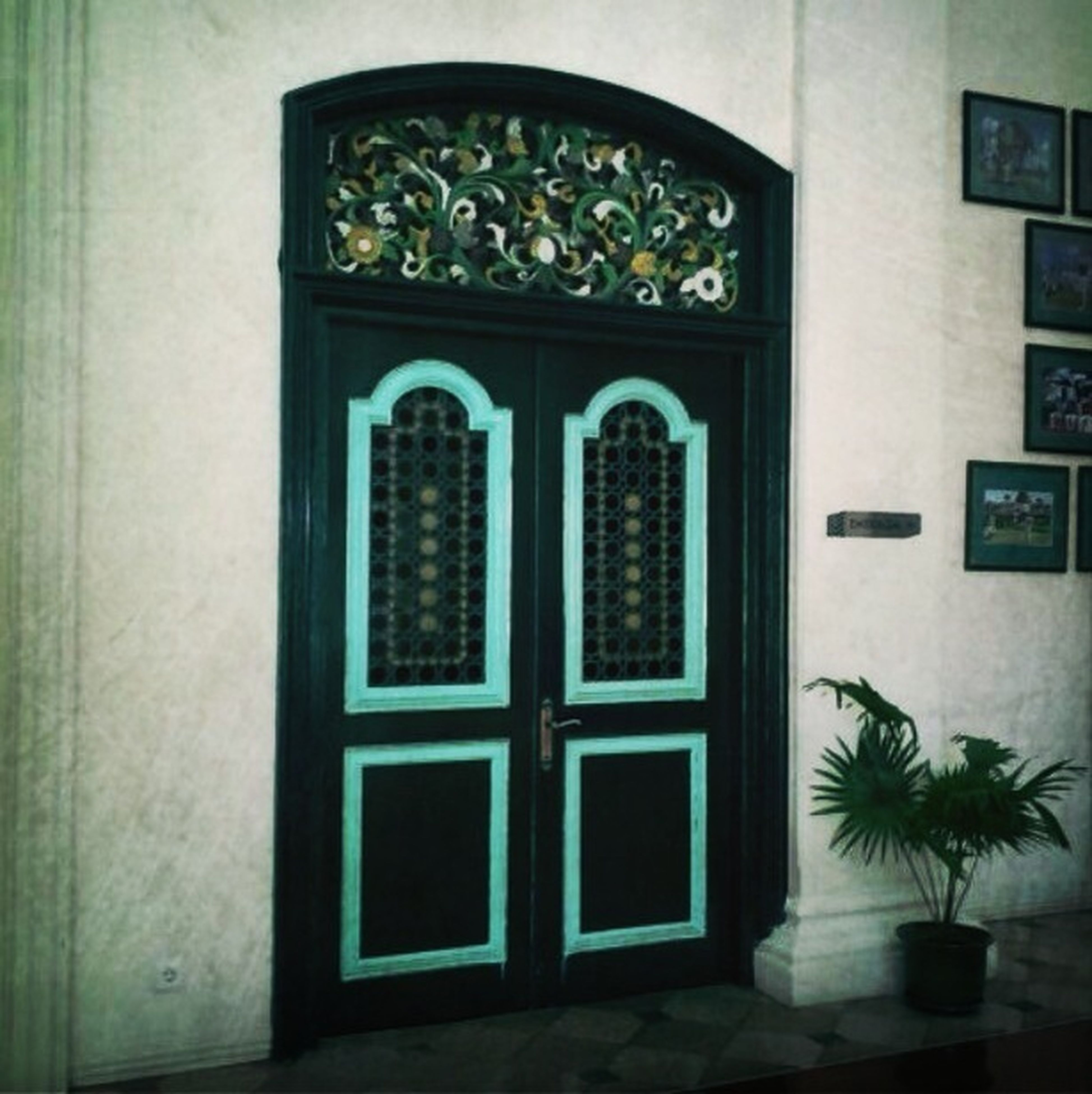 window, indoors, architecture, built structure, door, closed, house, building exterior, glass - material, home interior, entrance, no people, wall, wall - building feature, green color, potted plant, pattern, day, design, open
