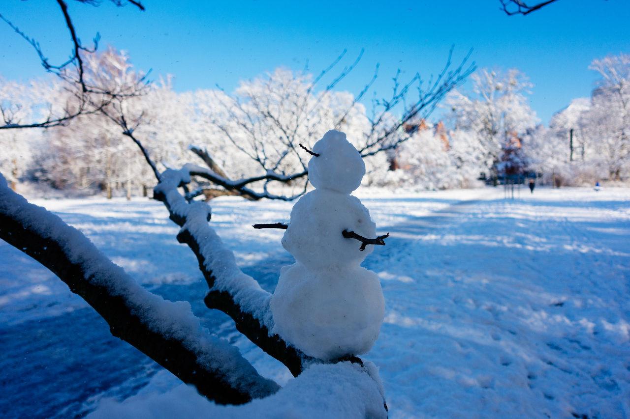 Beautiful stock photos of schneemann, winter, snow, cold temperature, tree
