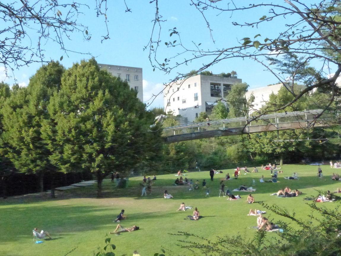 Summertime Park City Life Green Color Paris Je T Aime Parisisforlovers Visitparis Visitparis Garden Photography Paris, France