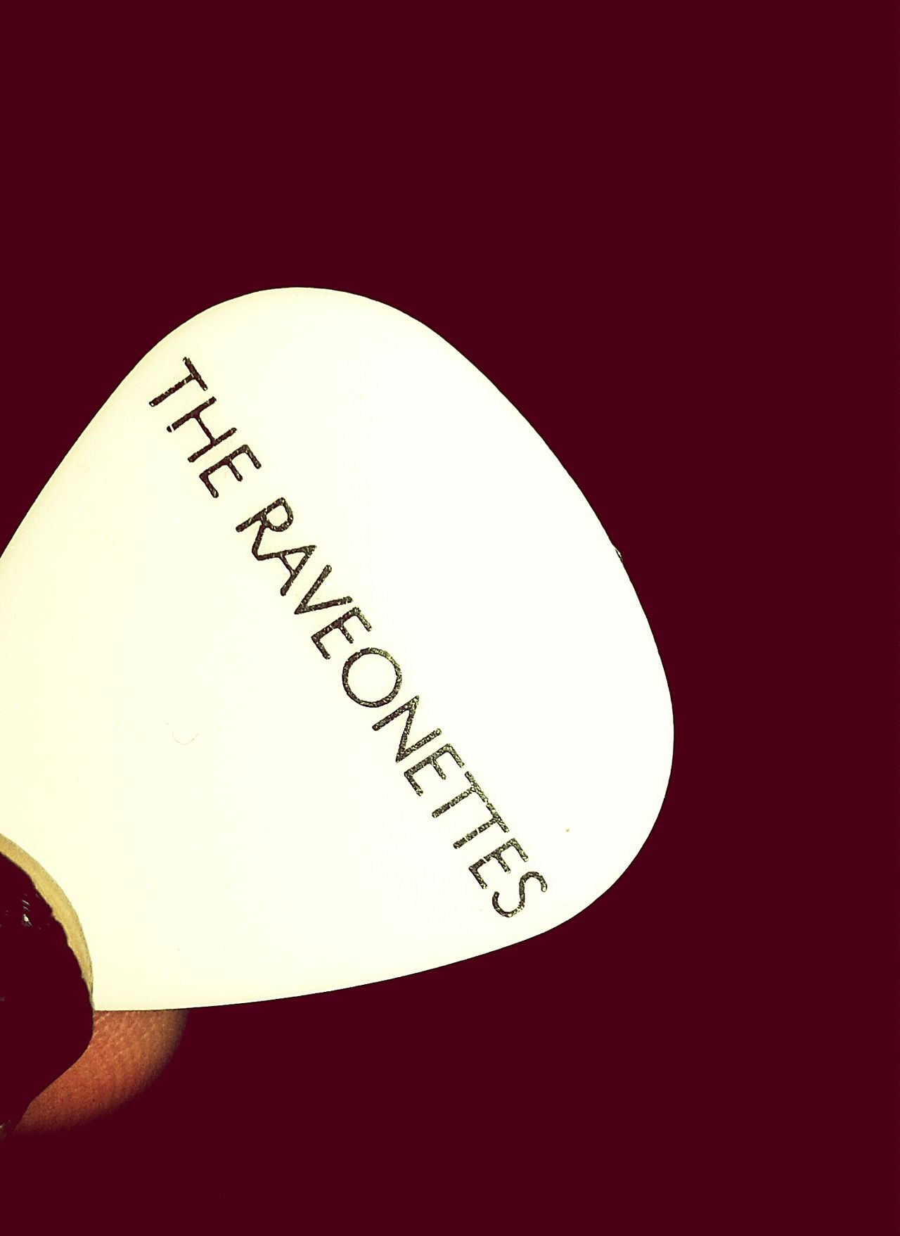 Concert Photography Concerts Guitar Pick The Raveonettes