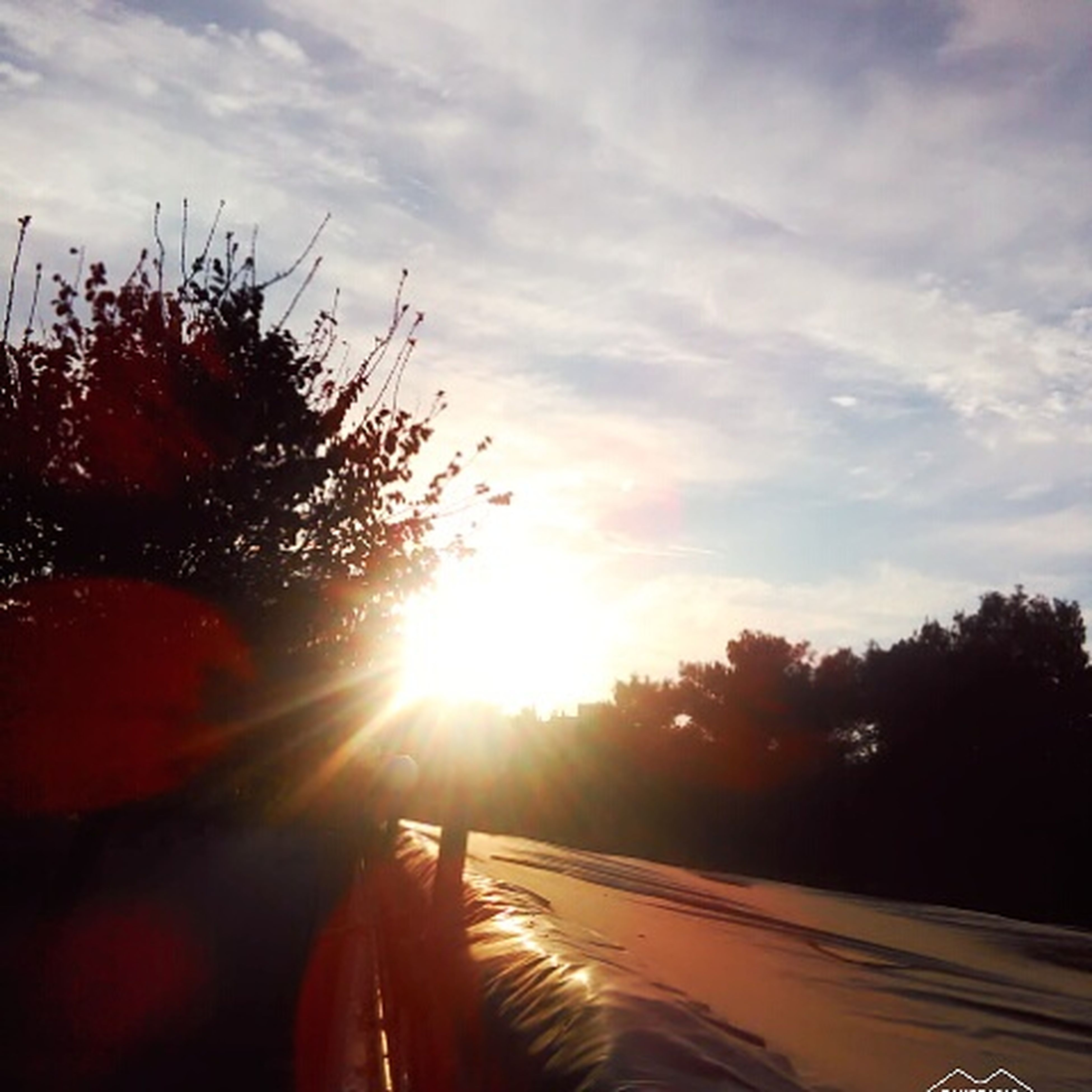 sunlight, sunset, transportation, sky, road, sun, sunbeam, tree, the way forward, nature, outdoors, beauty in nature, no people, day