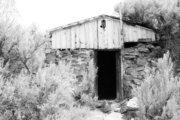 Black And White Architecture No People Built Structure Abandoned Outdoors Building Exterior