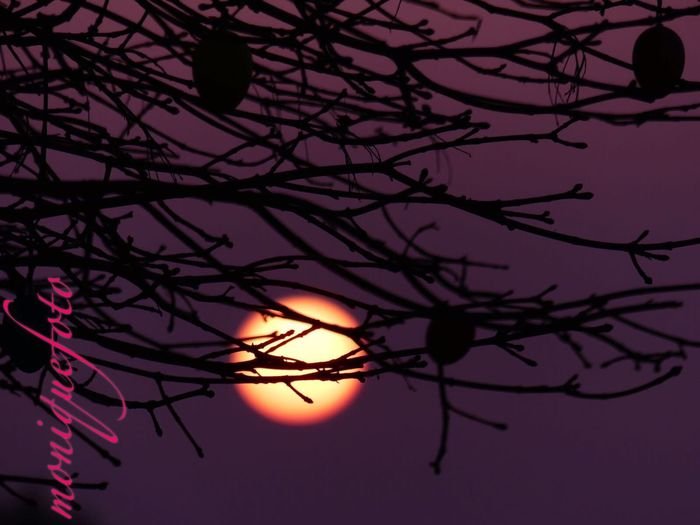 auch für euch soll die Sonne so schön aufgehen, wie hier. 💕💗 Monique52 Sonne Sonnenaufgang Februar 2017 Hochrhein Süddeutschland Sunset Beauty In Nature Sky Sunlight Sunshine